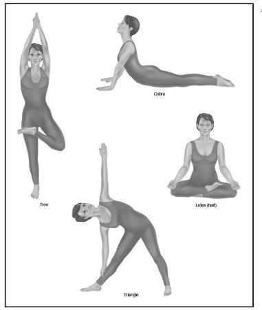 Demonstrations of the tree, cobra, and lotus yoga poses. The tree and triangle are good for balance and coordination. The cobra stretches the pelvic muscles and strengthens the back. Lotus is a meditative pose. (Illustration by Electronic Illustrators Group.)